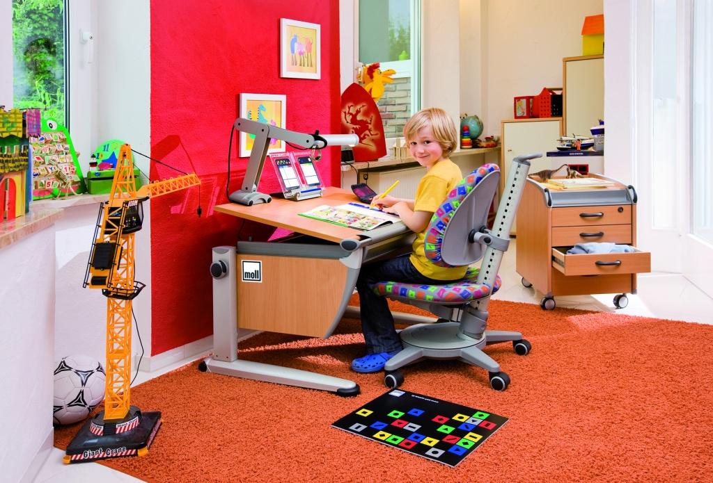 Birou Pentru Copii Scolari